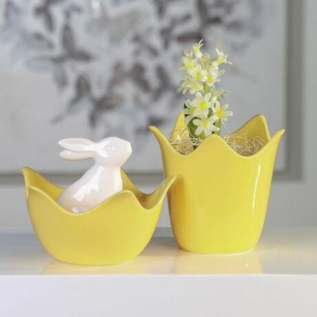 tulipan-sárga-tal.jpg