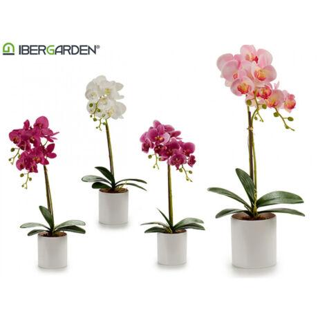 cserepes-rozsaszin-51cm-orchidea.jpg